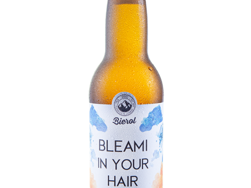 bleami in your head - Bierol